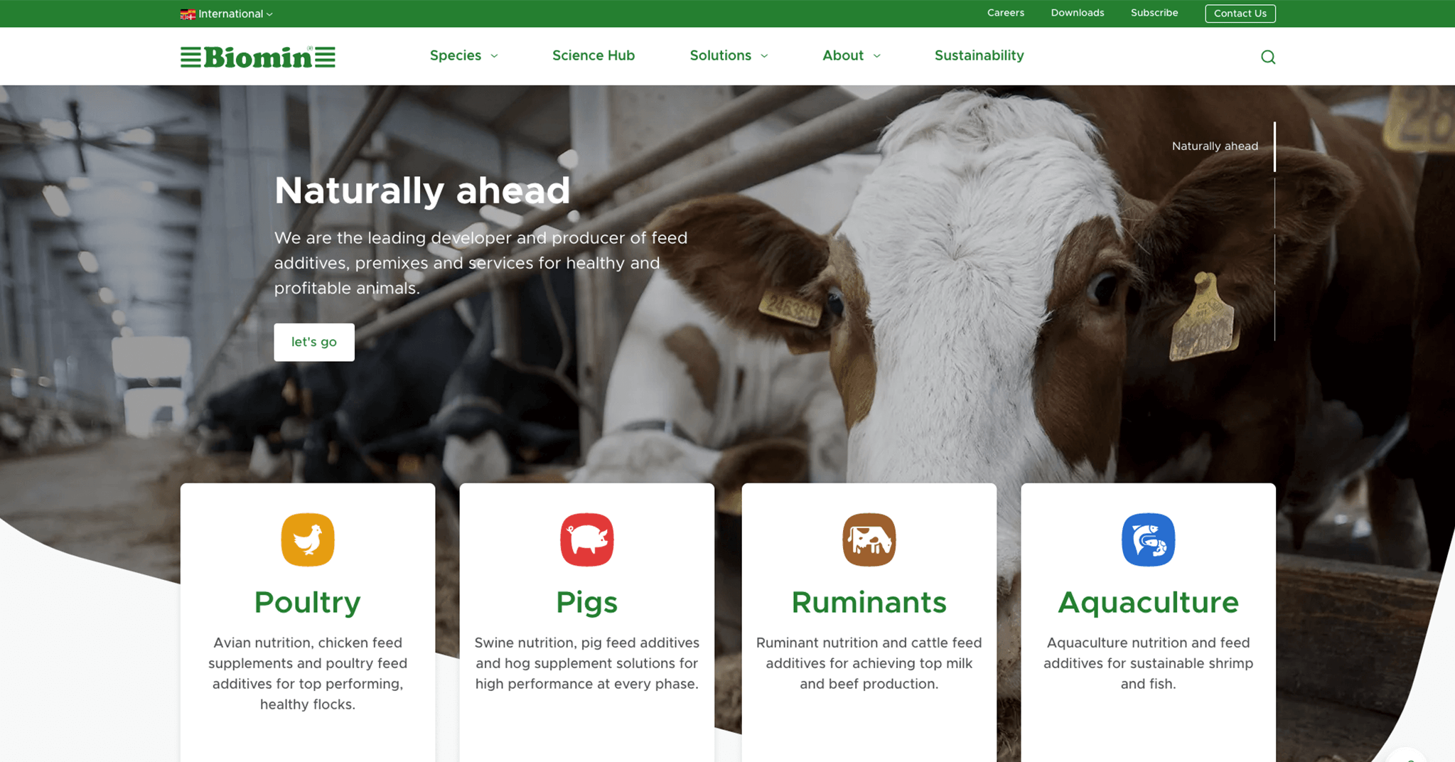 Animal Nutrition Feed Additives Biominnet