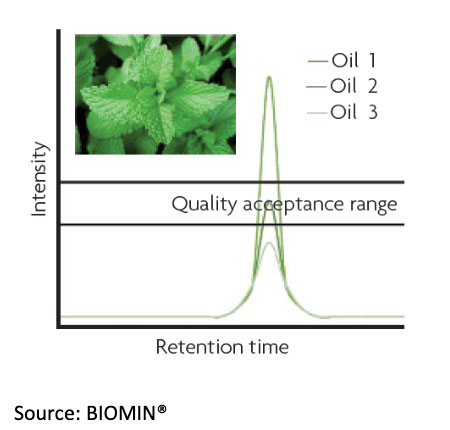 Menthol content in different mint oils varies widely reinforcing the need for strict quality control.